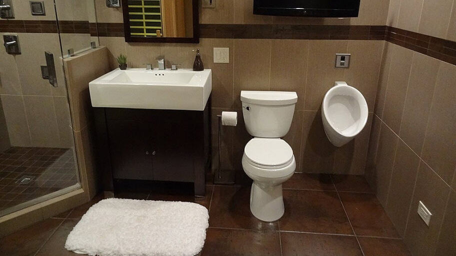 22 Toilet Types Amp Options For Your Bathroom Extensive