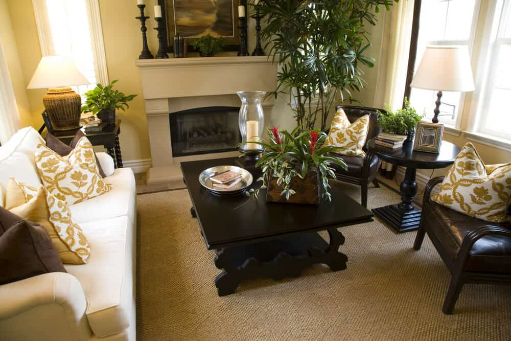 Traditional and contemporary small living room with plenty of plants.