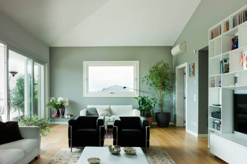 The lightness of this living room is due to the light green walls paired with a white shed ceiling, wide glass window and glass sliding doors that illuminate the hardwood flooring.