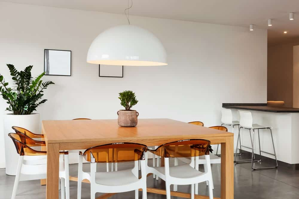 Green potted plants create a refreshing ambiance in this dining room with a large dome pendant and gorgeous chairs surrounding a light wood dining table over concrete flooring.