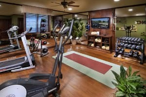 Large home gym with dumbbell rack, treadmill, TV and mirrors on wall.