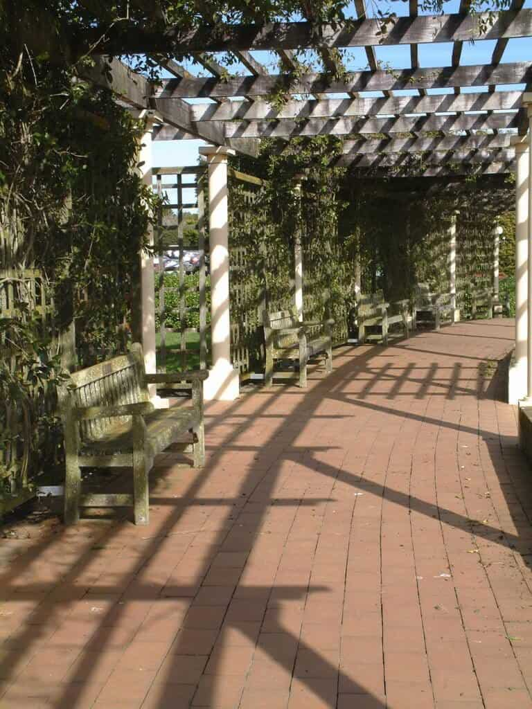 This breathtaking pergola is laced in vines that climb the lattice and entwine onto the rafters. The vines wrap around the structure and create shadows for a gorgeous shaded walkway.