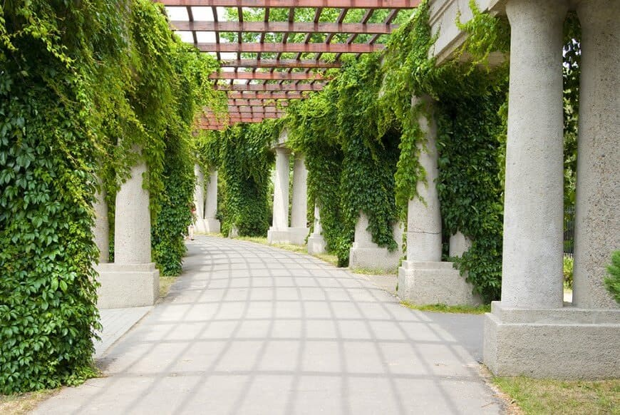 This elegant walkway is covered by tall pergolas held by romantic stone pillars. Brilliant green vines hold onto the pillars for a shaded secret garden look.