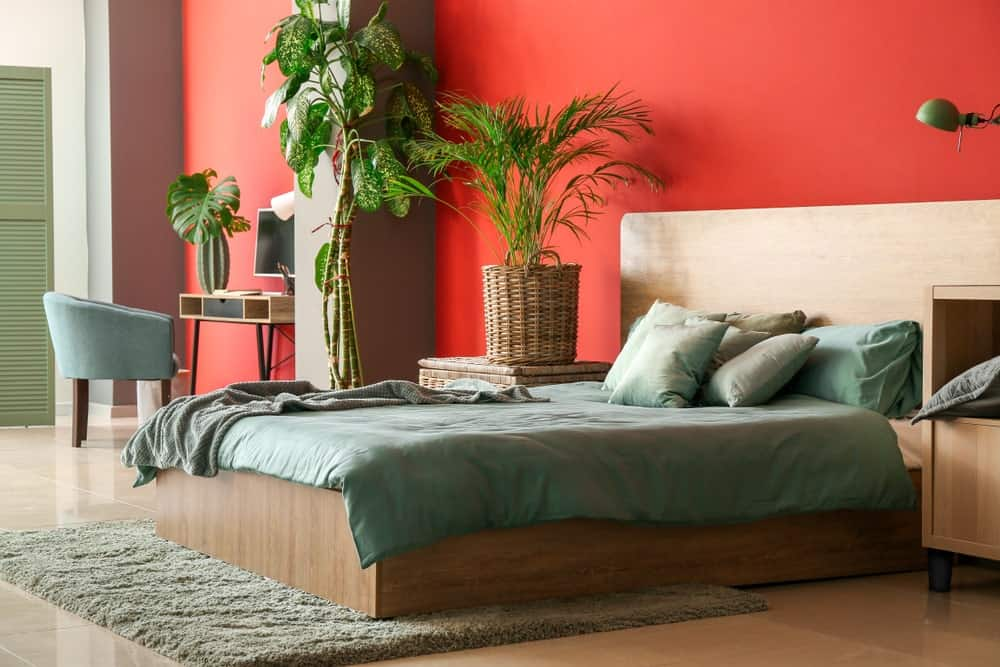A spacious master bedroom with a large cozy bed and a small study desk on the side. The room offers multiple indoor plants and a red wall.