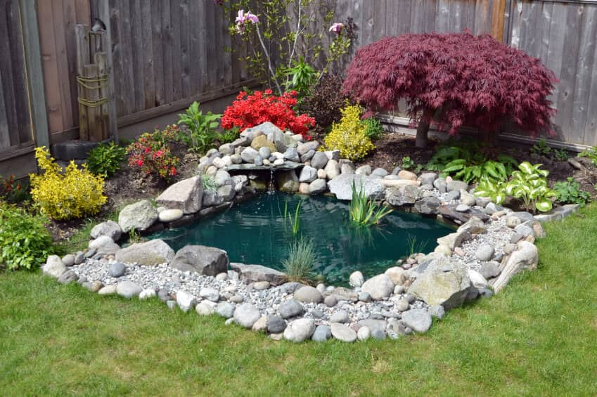 Small DIY backyard pond photo