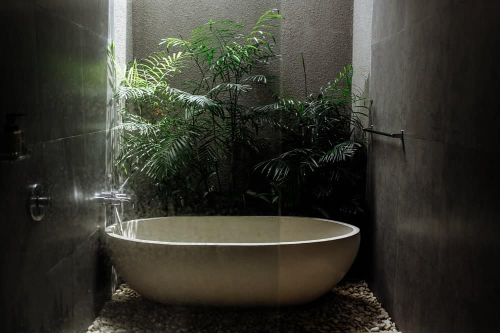 This bathroom has the bathtub and the shower area inside the same glass-enclosed area with gray walls. The far wall is textured and adorned with tropical plants that complement the white freestanding bathtub that is illuminated by a sky light above.