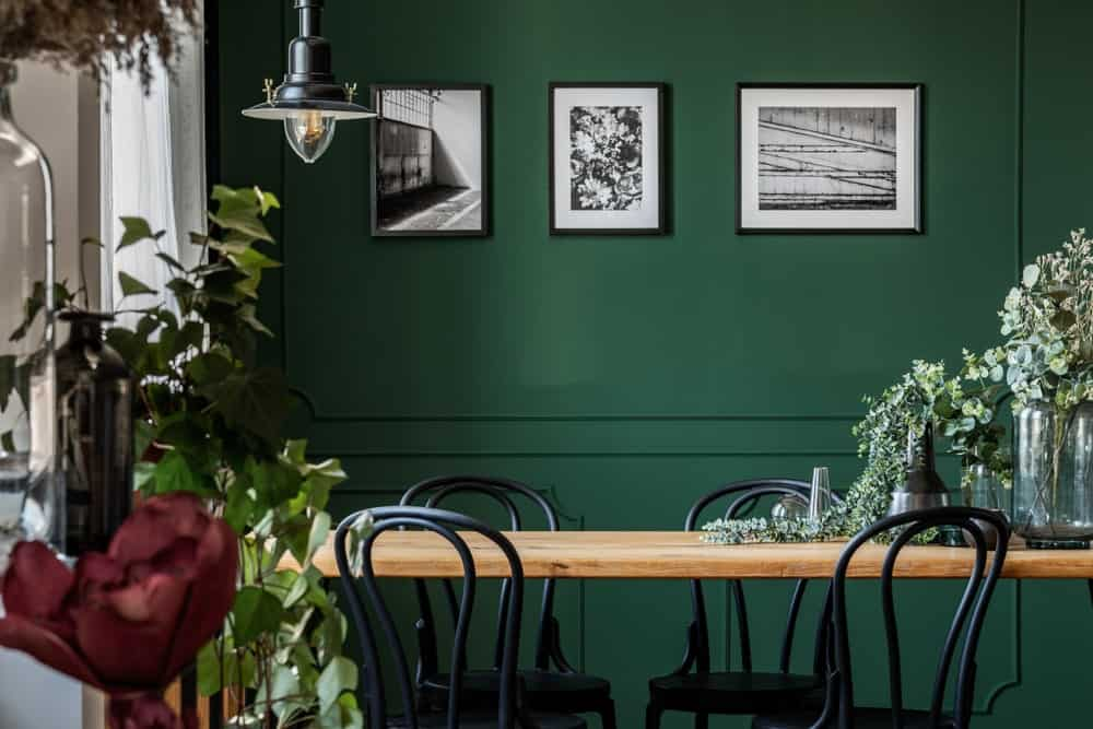 The deep green wall with elegant finishing accented by black and white photos is a charming background for the black wooden chairs surrounding the wooden table.