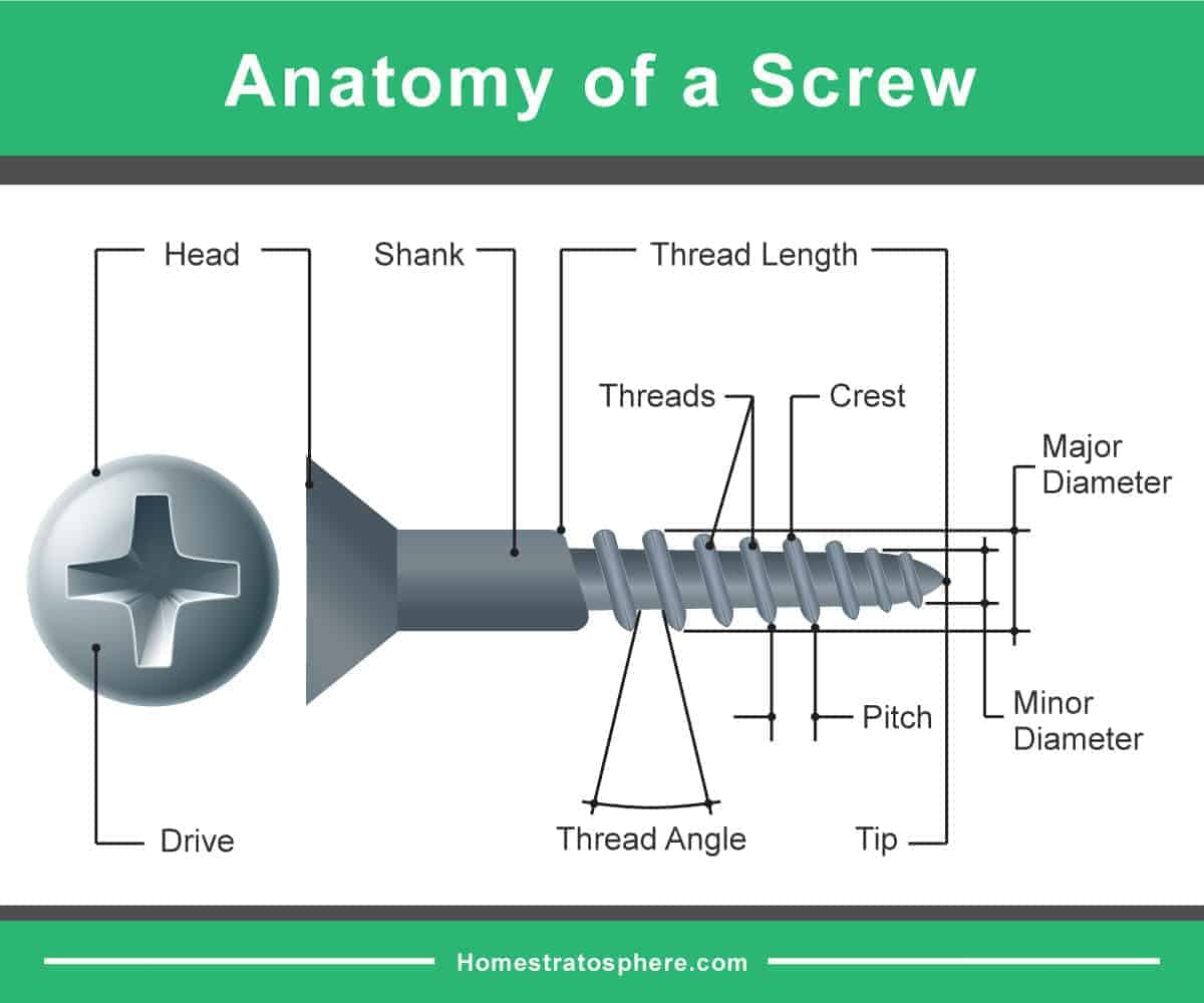 Parts of a screw