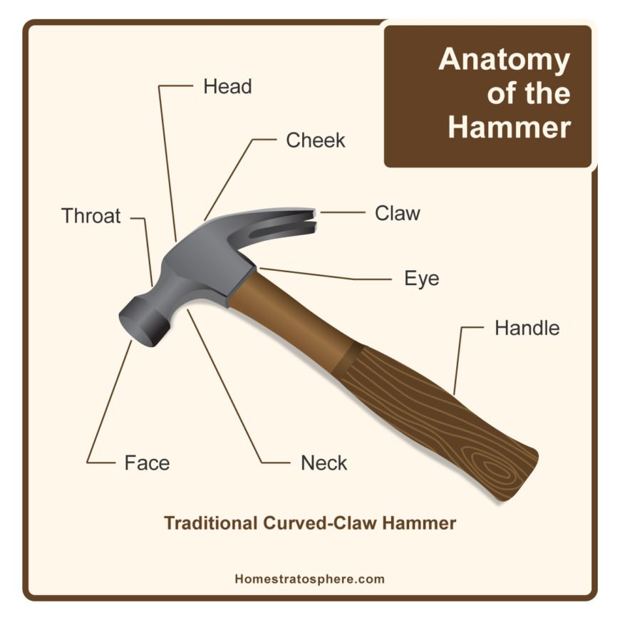 Diagram showing the different parts of a hammer