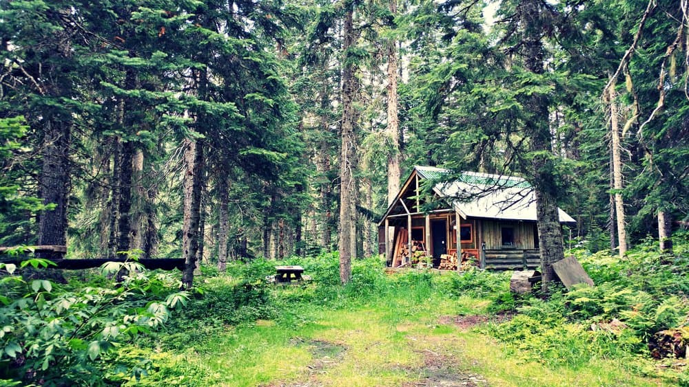 Small wood cabin in the woods