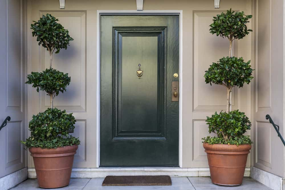 Dark green front door of a house with potted trees on each side