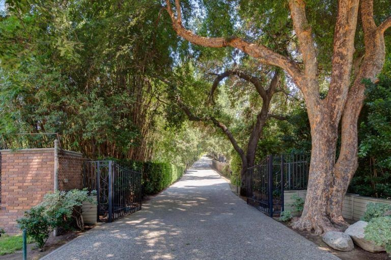 This long private driveway surrounded by lots of trees leads directly to the property.