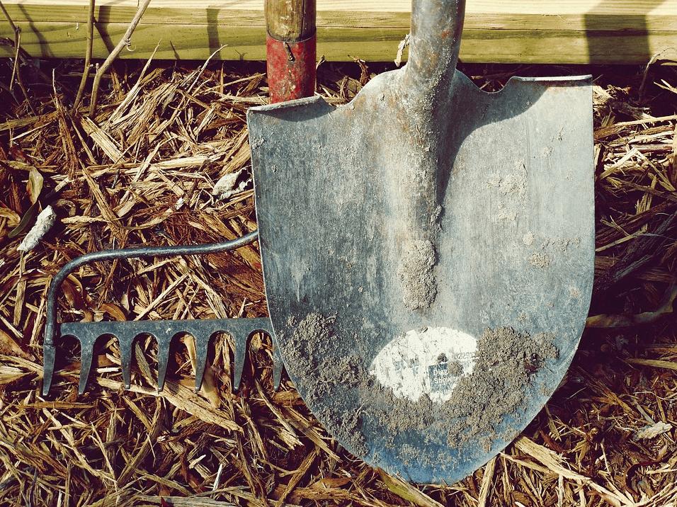 Photo of a shovel blade up close with a rake.