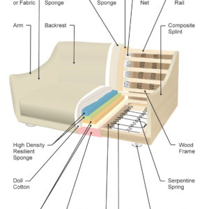 Cross section anatomy diagram of a couch