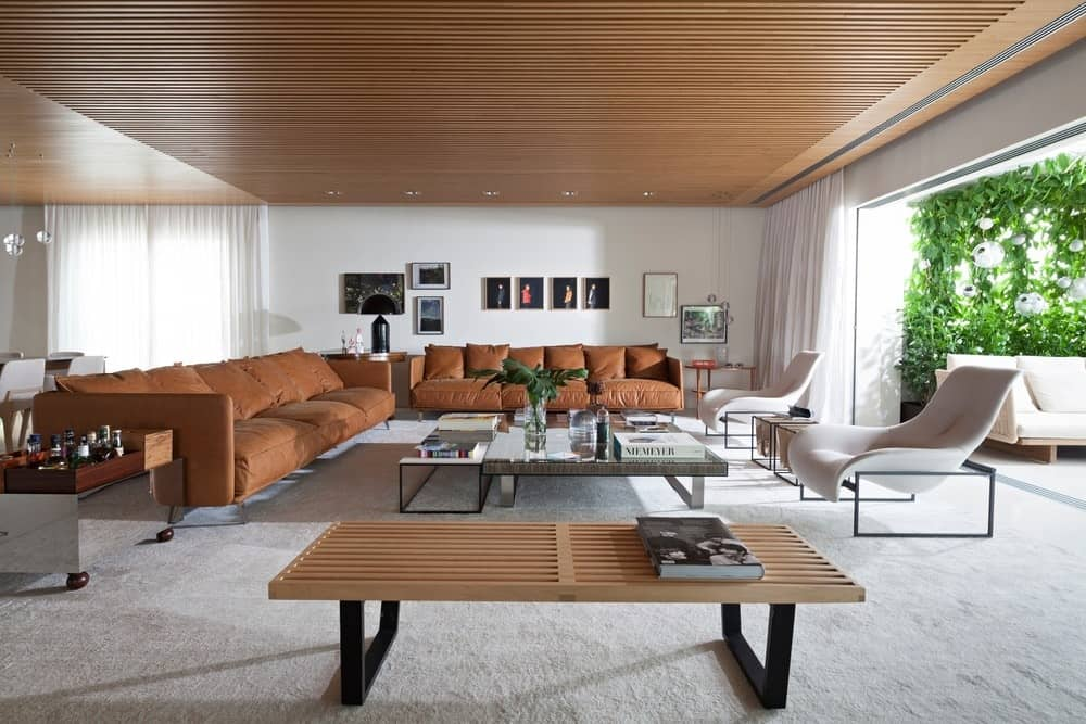 Living Room With Carpet Flooring And White Walls Along With Brown Sofa Set  And Hardwood Regular Ceiling.Coletivo Arquitetos