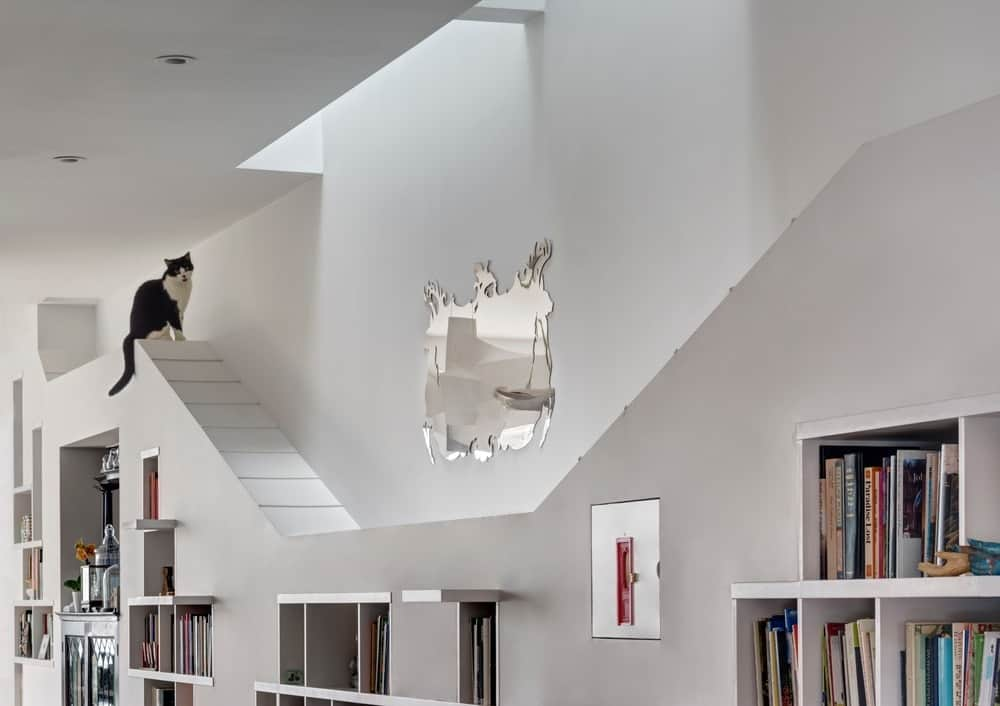 The cat lounge area on top of the bookshelf is long enough for the furry friend to navigate around the house. Photo Credit: Francis Dzikowski/OTTO
