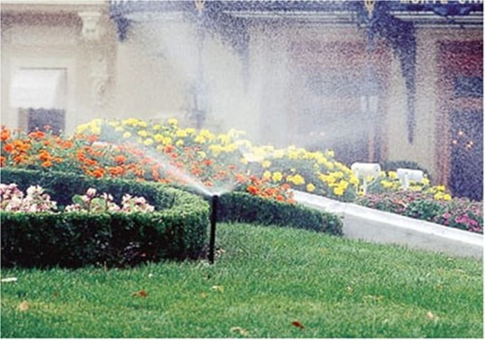3-inch pop-up sprinkler head with 15-foot adjustable pattern nozzle.