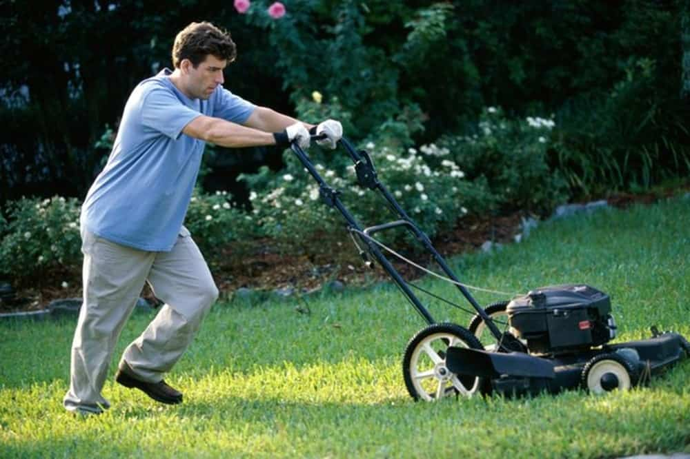 17 Types Of Lawnmowers 2020 Buying Guide