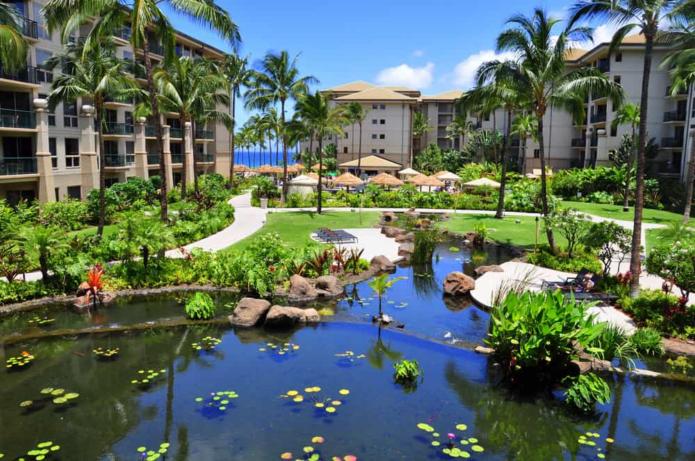 Hawaii rental condo in resort