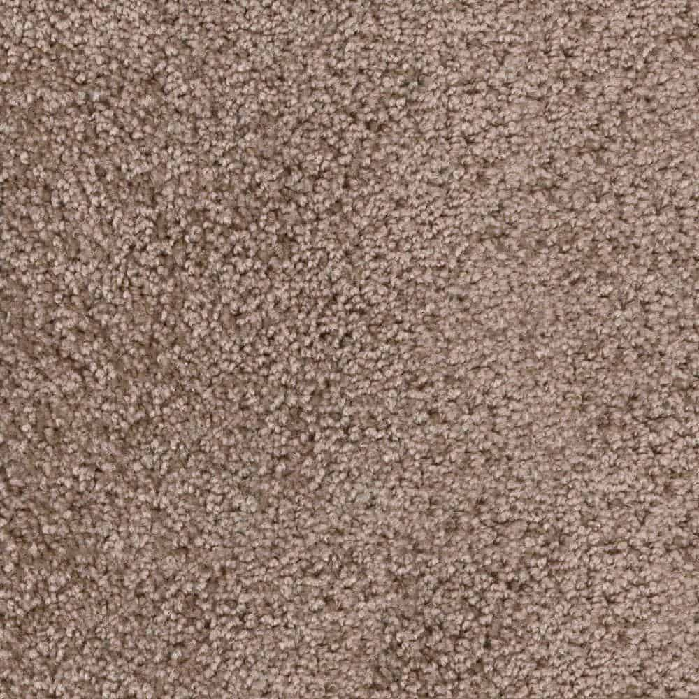 Textured carpet with high quality fiber and and a virtually stain-proof coloration.