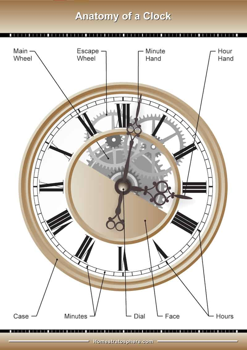 Diagram illustrating the different parts of a wall clock