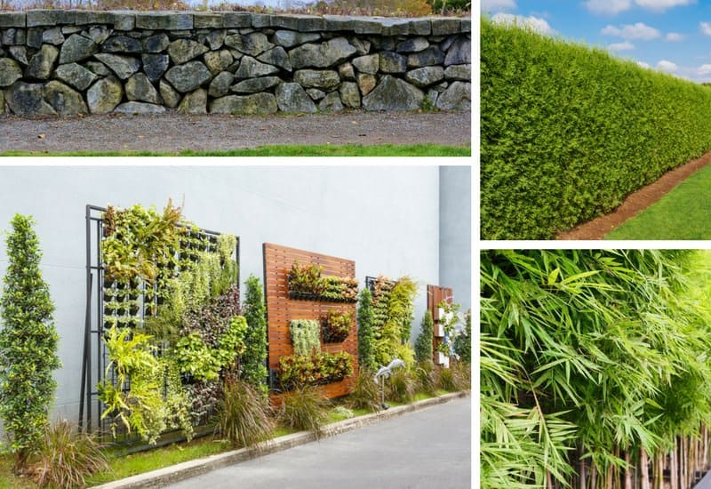 Photos of fence alternatives in the backyard