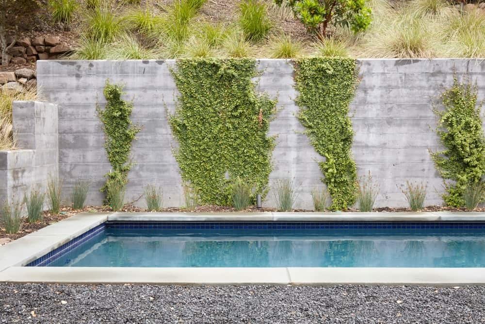 Swimming pool with rectangular shape. Photo credit: Bruce Damonte