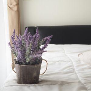 Lavender in bedroom.