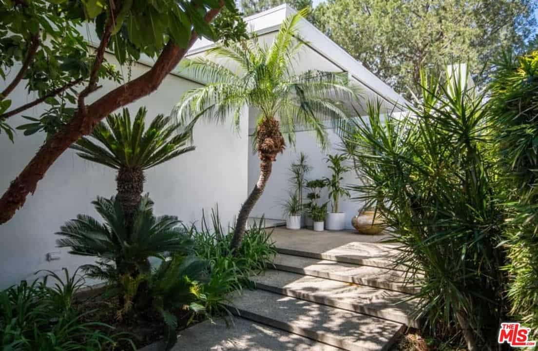 The walkway leading to entry is surrounded by beautiful and healthy plants.