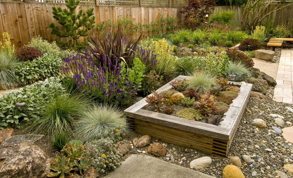 Yard with no grass. Rock and cacti garden instead.