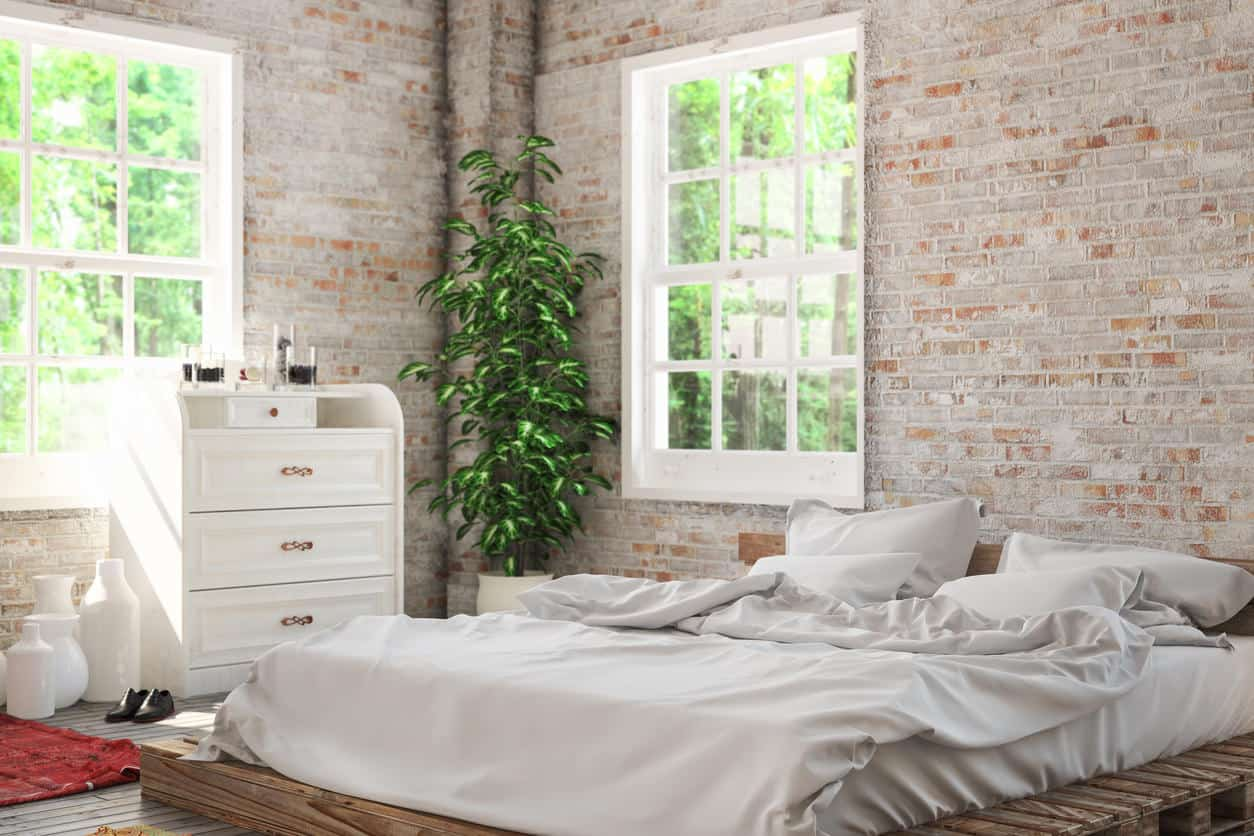 Bedroom with windows, wood platform bed and tall plant in the corner.