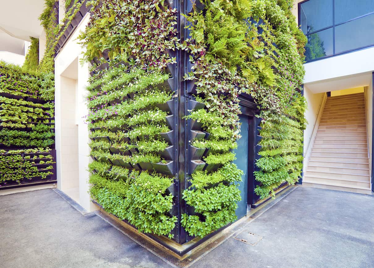 Incredible interior walls with vertical herb gardens which could be incorporated into any home to create a more natural interior.