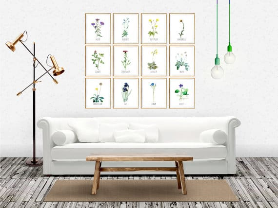 A series of floral arts displayed on the wall of a living room.