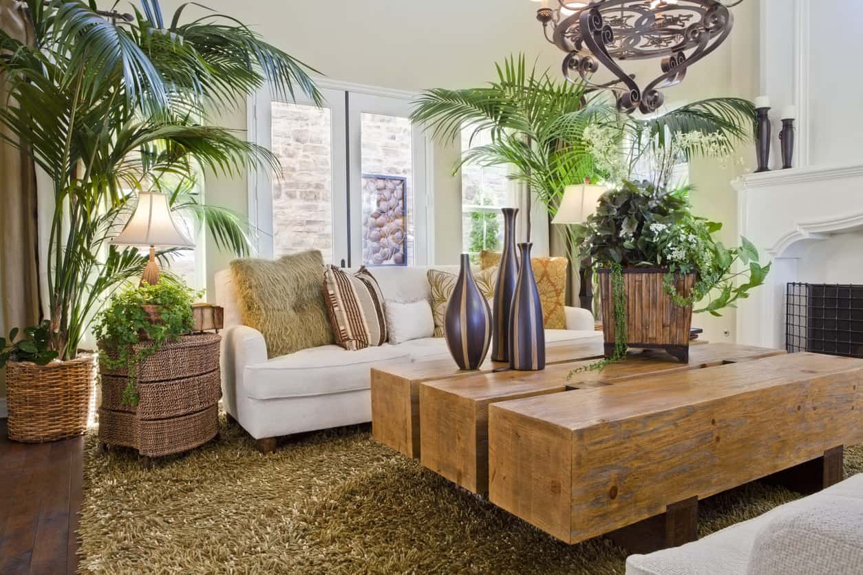 Bioliphic living room with lots of plants and natural materials and light.