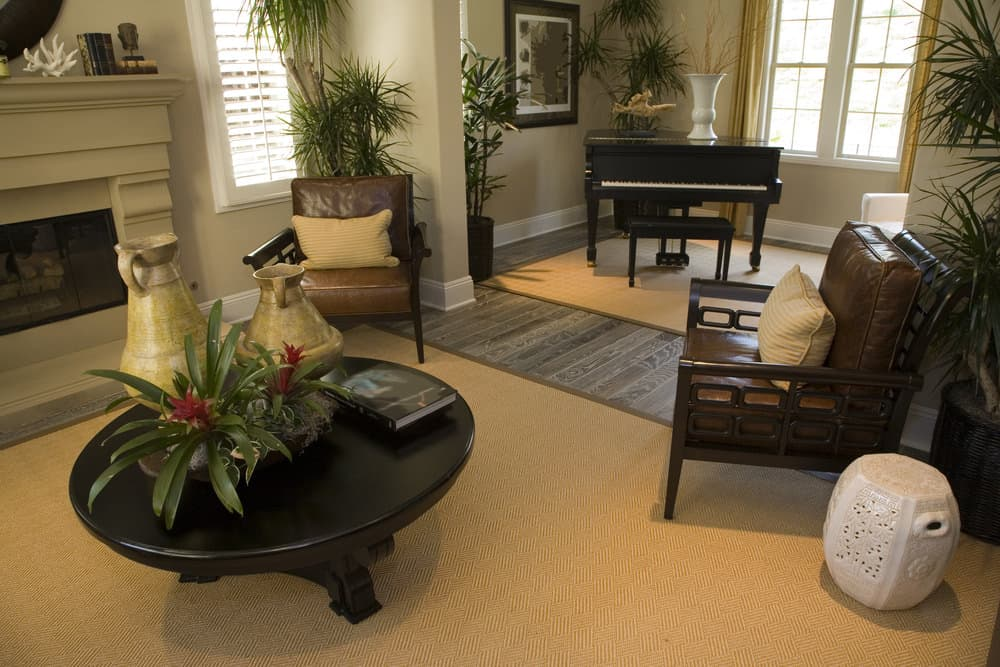 Living room with plenty of plants, brown carpeting, dark wood furniture and baby grand off to the side.