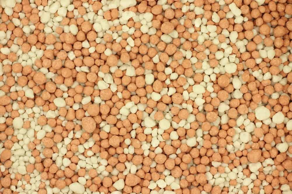 High phosphorous fertilizer.