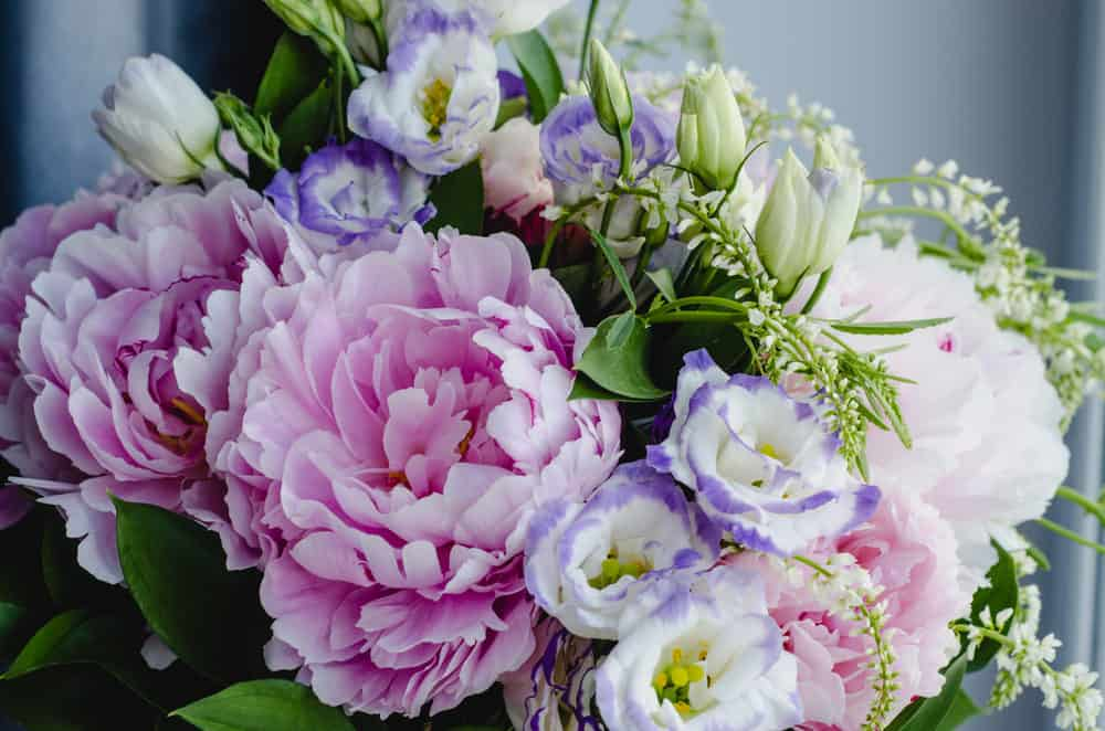 Pink flowers bouquet: Pink peonies and lilac Eustoma roses with green leaf in a glass vase.