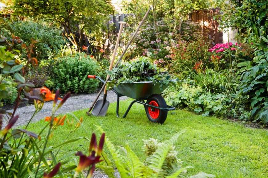 Wheelbarrow in the yard with beautiful gardens