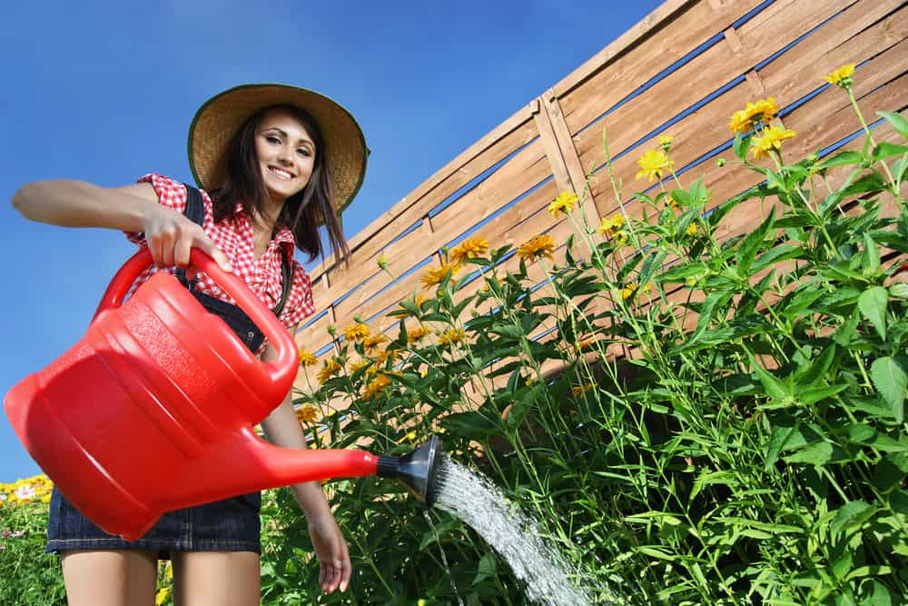 Woman watering plants and flowers with watering can