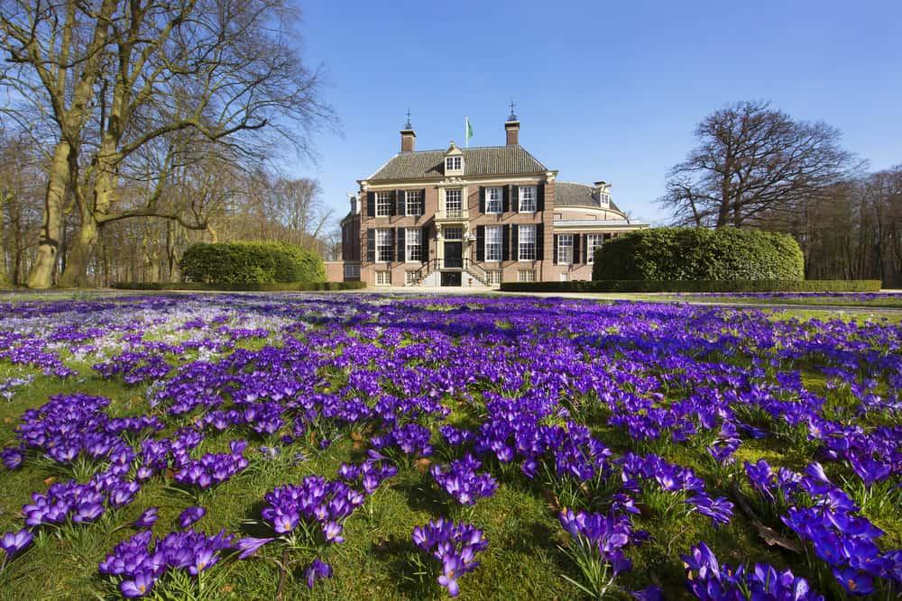 Castle Groeneveld
