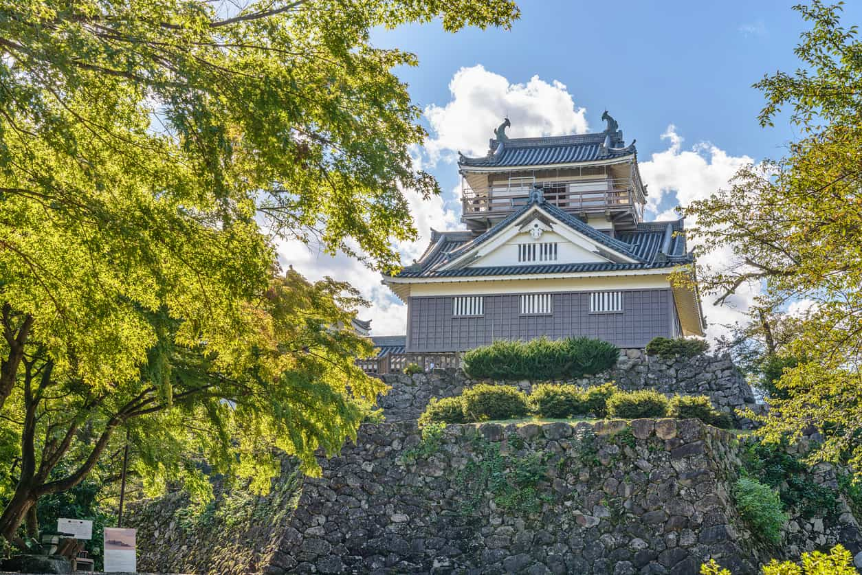 Echizen Ono jo castle