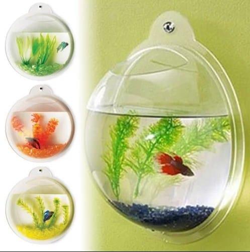 Acrylic fish tank.