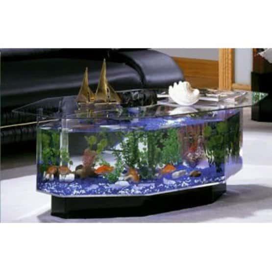 Coffee table fish tank.