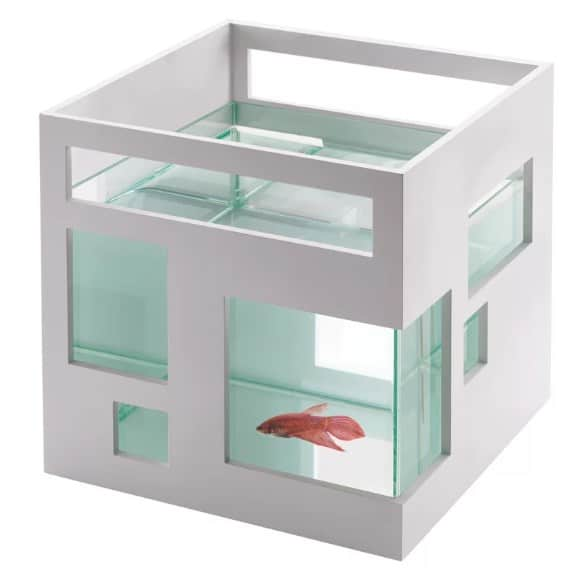 Glass fish tank.
