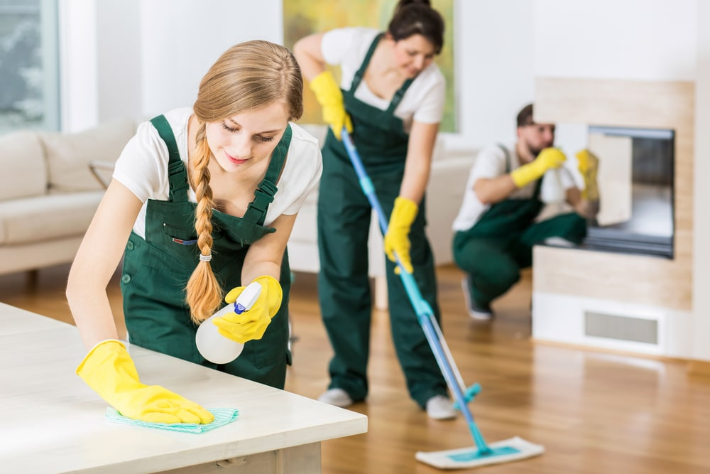 A team of cleaners cleaning the house.