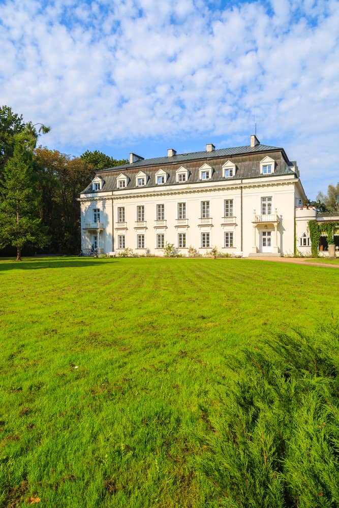 palace in Radziejowice village