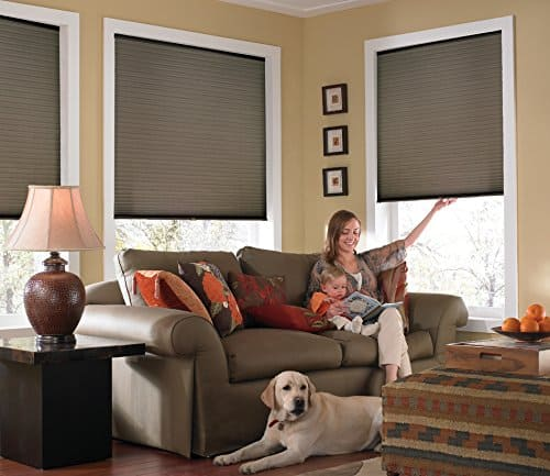 These cordless single cell shades are energy efficient and child safe and also they are light filtering and completely private.