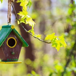 Small wooden birdhouse with a green-colored roof.