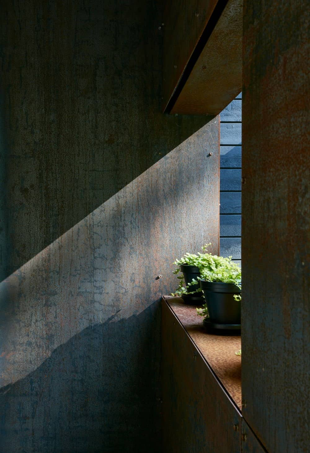 There's also a window for plants that need direct sunlight. Photo Credit: James Brittain