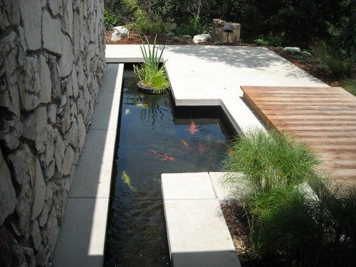 A contemporary-style, koi fish pond.